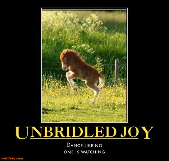 unbridled-joy-pony-dancing-happy-humor-demotivational-posters-1326515542