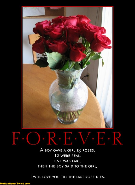 forever-roses-girl-fake-last-motivational-1323842774