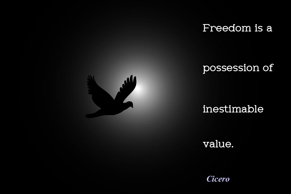freedom1