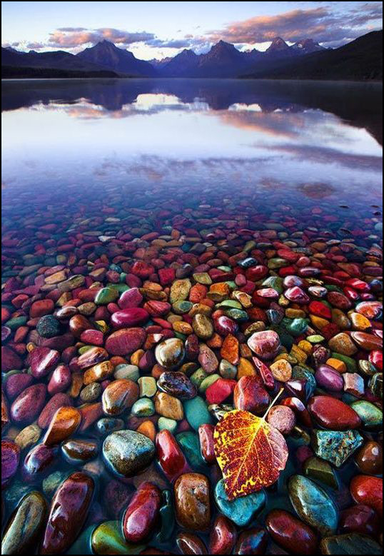 Pebble Shore Lake Montana