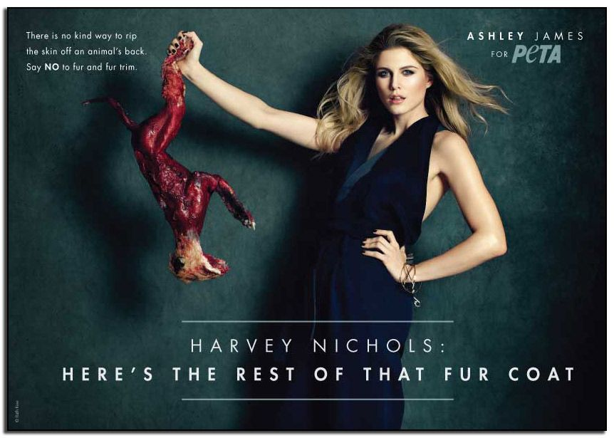 4b0a2298a25 HARVEY NICHOLS: HERE'S THE REST OF THAT FUR COAT | Ronnie's Blog