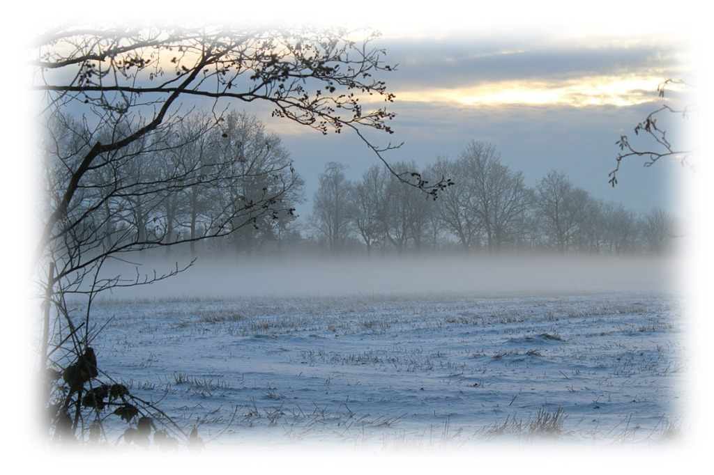 Winter-Morning__