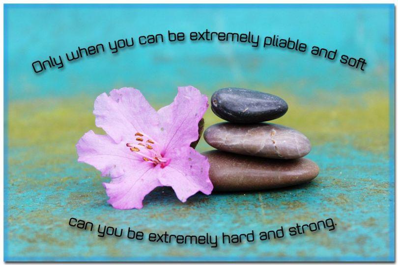 zen-proverb
