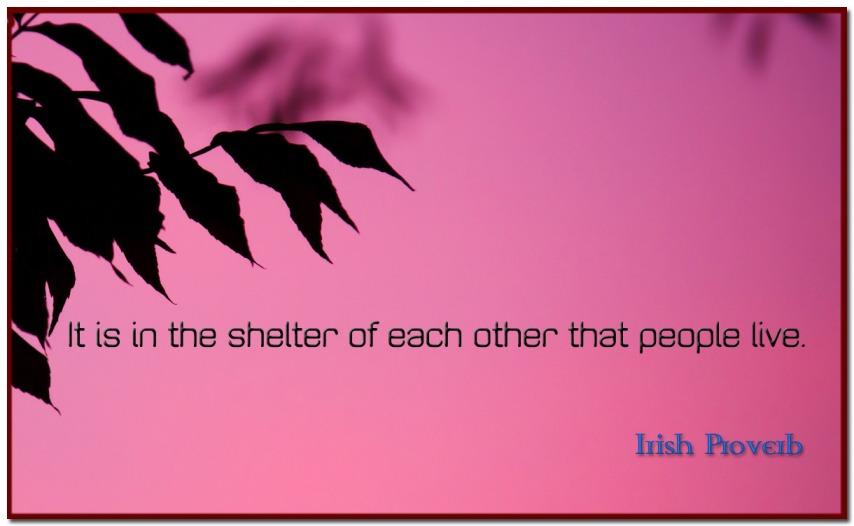 irish-proverb
