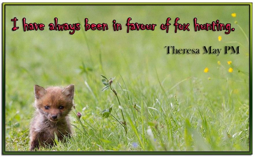 Fox-hunting__